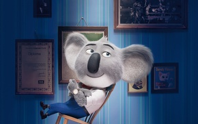 Picture film, animated film, Universal Pictures, Matthew McConaughey, Illumination Entertainment, koala, Sing, Buster Moon, cinema movie