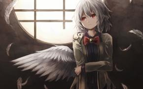 Picture girl, wings, anime, feathers, art, touhou, kishin sagume, thkani