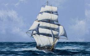 Picture Sea, Figure, Ship, Sailboat, Mast, Sails, Seagulls, White sails