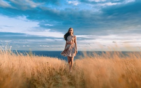 Picture excellent, Sophia, the beauty, sunset, beautiful, girl, field, Ivan Proskurin, sky, dress, portrait, Safiya, brown …