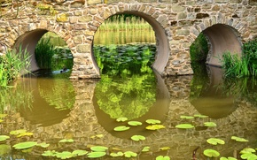 Picture water, bridge, nature, pond, arch