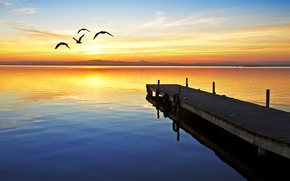 Picture the sky, the sun, sunset, river, seagulls, the evening, pierce, the bridge, quietly, Wallpaper from …