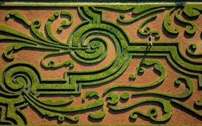 Picture garden, top, maze