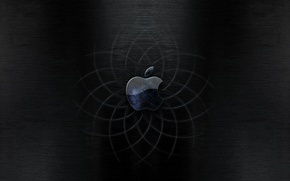 Wallpaper curves, Apple, black