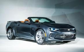 Picture Chevrolet, Camaro, Convertible, 2016