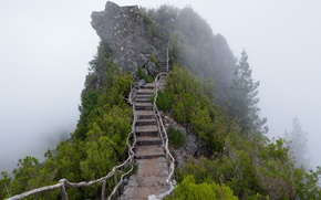 Picture mountain, fog, ladder, stage