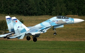 Picture fighter, dry, Sukhoi, tandem, Flanker-C, su-30MK
