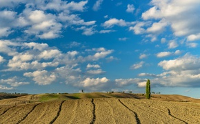 Picture field, the sky, clouds, nature, hills, Italy, Tuscany