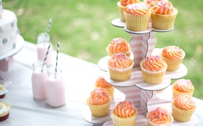 Picture decoration, dessert, sweet, cupcakes