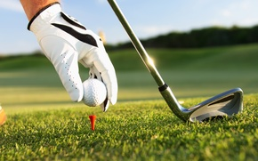 Picture grass, golf, gloves