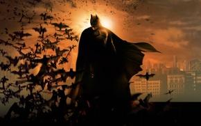 Picture Batman, Costume, MASK