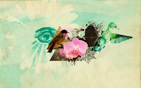 Picture flower, birds, eyes, collage, Abstractia