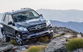 Picture Mercedes-Benz, 4MATIC, 2015, GLE, 250-d