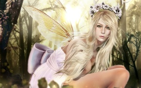 Picture girl, wings, fairy, wreath
