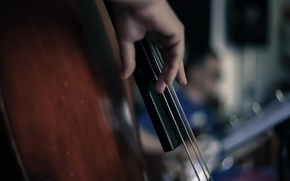 Picture macro, music, tool