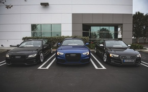 Picture car, audi, Coupe, tuning