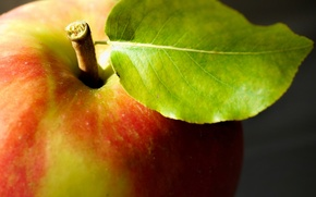 Picture macro, Apple, food, fruit
