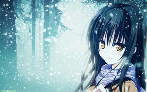 Picture forest, snow, anime, scarf, girl, forest, snow, Kotegawa Yui, To Love Ru