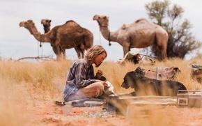 Picture the film, desert, dog, black, girl, black, journey, desert, Australia, dog, camels, movie, australia, 2013, …