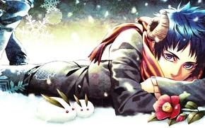 Picture winter, flower, snow, snowflakes, anime, scarf, art, horns, guy, bunnies, Kazuki, Ana!