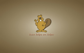 Picture the inscription, minimalism, beaver, beaver