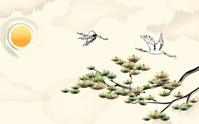 Picture the sky, the sun, nature, branch, art, crane