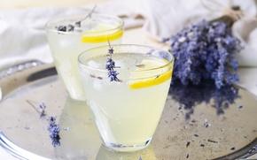 Picture lemon, lavender, lemonade