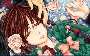 Picture water, calm, roses, hands, Vampire Knight, Yuki, bows