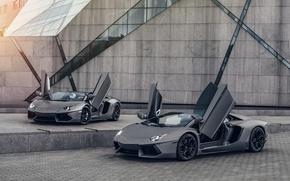Picture Lamborghini, LP700-4, Aventador, Supercars, Gray, Dual, University of Minnesota
