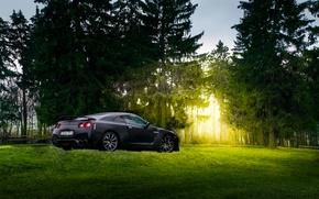 Picture GTR, Japan, Nissan, Car, Black, Sun, Matte, R35, Sport, Summer, Forest, Rear, Farm