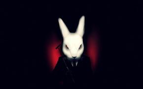 Picture white, the dark background, rabbit, art, costume, misfits