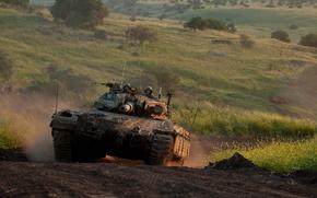 Picture tank, Israel, Sabra Mk II