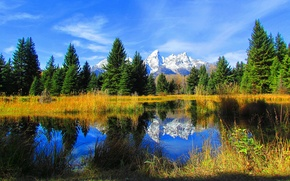 Picture autumn, the sky, trees, mountains, lake, spruce, Wyoming, USA, grand teton national park