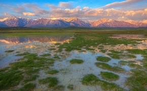 Picture grass, Mountains, puddle