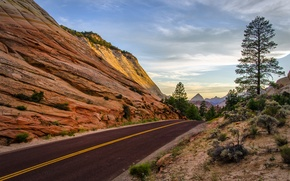 Picture road, trees, mountains, rocks, Utah. Summer, Leaving Zion National Park