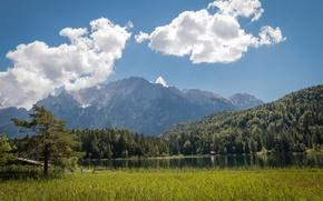 Picture forest, clouds, mountains, lake, Germany, Bayern, Alps, Germany, Bavaria, Alps, Karwendel, Karwendel, Mittenwald, The middle ...
