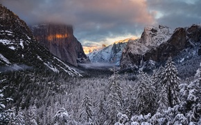 Picture winter, forest, trees, valley, CA, California, Yosemite national Park, Yosemite National Park, the Sierra Nevada, …