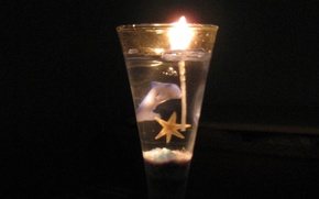 Picture light, Dolphin, fire, holiday, new year, candle, starfish