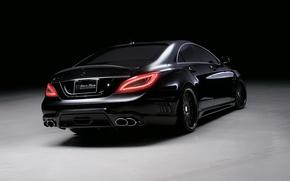 Picture Mercedes-Benz, CLS, black, class, bison