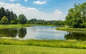 Wallpaper Park, trees, Northern Illinois, Morton Arboretum, greens, summer, the sun, grass, pond, USA