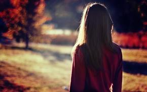 Picture girl, the sun, back, brunette