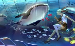 Picture girl, fish, tape, bubbles, star, art, jellyfish, form, schoolgirl, vocaloid, under water, Vocaloid, whale, bottle …