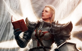 Picture Blizzard, Art, Diablo 3, Female, Blizzard Entertainment, Fan Art, Fanart, Video Game, Reaper of Souls, …