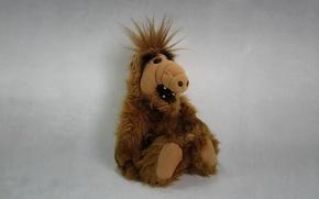Picture the dark background, toy, alien, alien, sitting, ALF, Alf