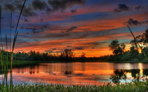 Picture the sky, water, clouds, trees, landscape, sunset, nature, lake