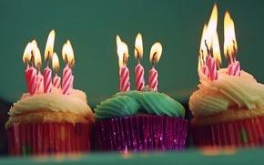 Picture Happy, Birthday, Cupcakes