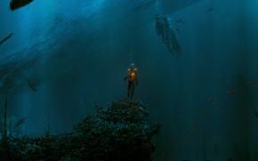 Wallpaper fish, people, water, depth, fire
