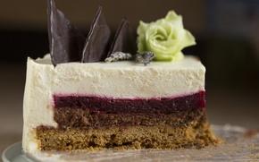 Picture rose, chocolate, cake, layers, dessert, piece