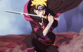 Picture technique, Naruto, Boruto