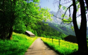 Picture road, forest, the sky, clouds, trees, mountains, nature, rock, house, spring, rock, house, forest, road, ...